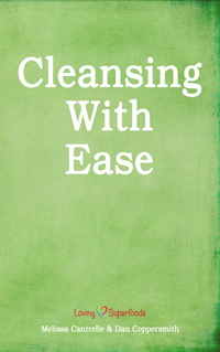 Cleansing With Ease Book